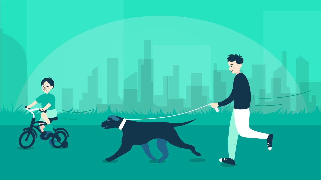 Pet And Dog Walking Proper Etiquette